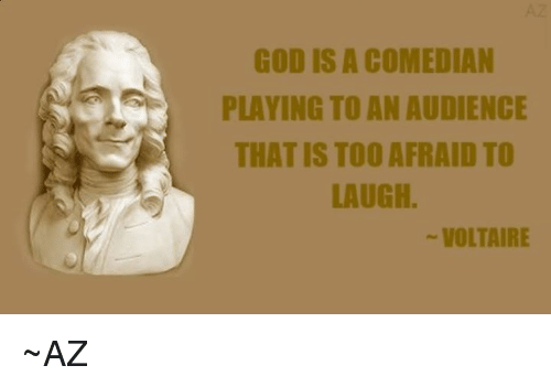 Memes, Voltaire, and An Audience: GOD IS A COMEDIAN  PLAYING TO AN AUDIENCE  THAT IS TOO AFRAID TO  LAUGH.  VOLTAIRE ~AZ