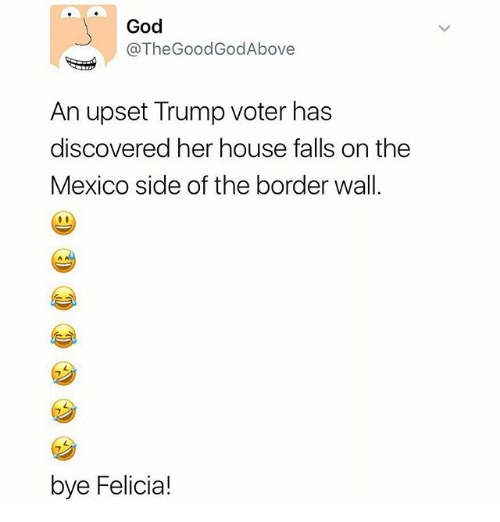 Bye Felicia, God, and Memes: God  @The Good GodAbove  An upset Trump voter has  discovered her house falls on the  Mexico side of the border wall.  bye Felicia!