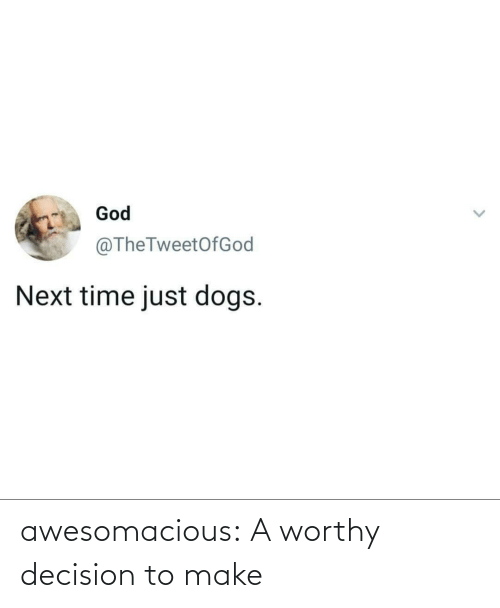 Next Time: God  @TheTweetOfGod  Next time just dogs. awesomacious:  A worthy decision to make