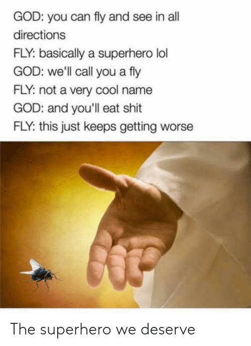 Eat Shit: GOD: you can fly and see in all  directions  FLY: basically a superhero lol  GOD: well call you a fly  FLY: not a very cool name  GOD: and you'll eat shit  FLY: this just keeps getting worse The superhero we deserve