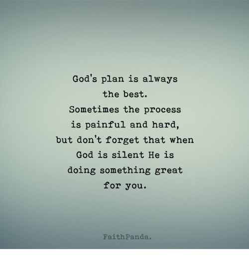 God, Memes, and Best: God's plan is always  the best.  Sometimes the process  is painful and hard,  but don't forget that whern  God is silent He is  doing something great  for you.  FaithPanda.