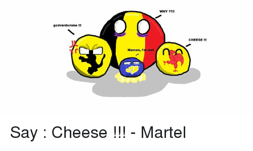 Memes, 🤖, and Cheese: godverdomme  Maman, I'm wet  WHY  CHEESE Say : Cheese !!! - Martel