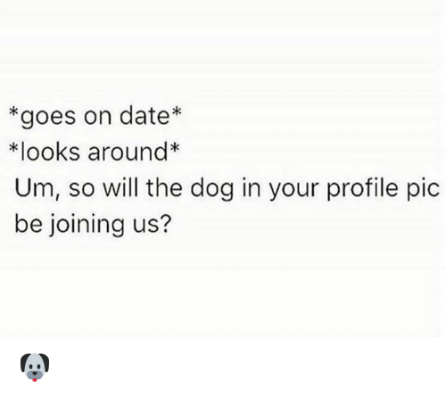 dates: *goes on date  *looks around*  Um, so will the dog in your profile pic  be joining us? 🐶