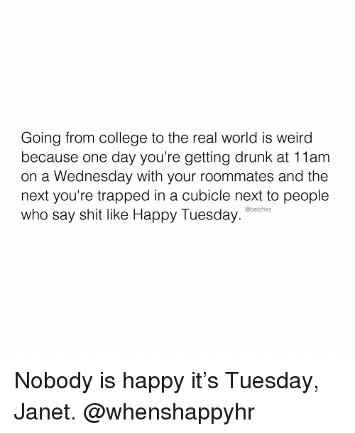 Getting Drunk: Going from college to the real world is weird  because one day you're getting drunk at 11am  on a Wednesday with your roommates and the  next you're trapped in a cubicle next to people  who say shit like Happy Tuesday  @betches Nobody is happy it's Tuesday, Janet. @whenshappyhr