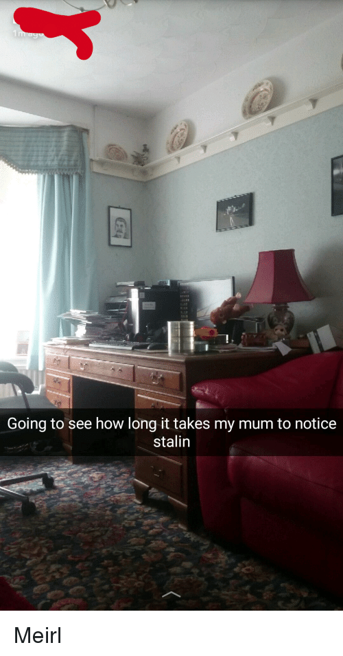 Irl, How, and Stalin: Going to see how long it takes my mum to notice  stalin Me☭irl