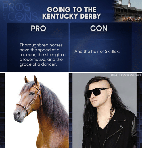 skrillex: GOING TO THE  KENTUCKY DERBY  PRO  CON  Thoroughbred horses  have the speed of a  racecar, the strength of  a locomotive, and the  grace of a dancer.  And the hair of Skrillex: