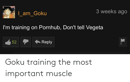 muscle: Goku training the most important muscle