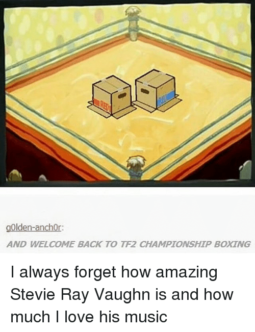 Boxing, Love, and Memes: gOlden-anchor:  AND WELCOME BACK TO TF2 CHAMPIONSHIP BOXING I always forget how amazing Stevie Ray Vaughn is and how much I love his music