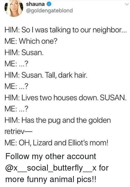 Funny, Memes, and Animal: @goldengateblono  HIM: So l was talking to our neighbor...  ME: Which one?  HIM: Susan  ME: ..?  HIM: Susan. Tall, dark hair.  ME: .?  HIM: Lives two houses down. SUSAN  ME: ...?  HIM: Has the pug and the golden  retriev  ME: OH, Lizard and Elliot's mom! Follow my other account @x__social_butterfly__x for more funny animal pics!!