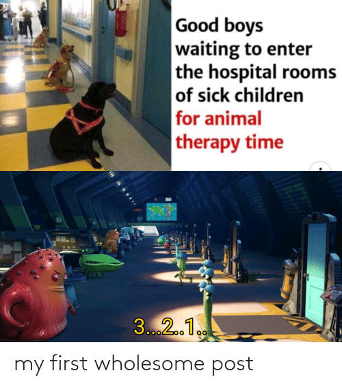 Hospital: Good boys  waiting to enter  the hospital rooms  of sick children  for animal  therapy time  3...2.1. my first wholesome post