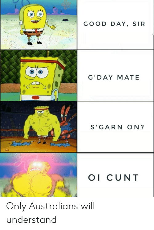 Cunt: GOOD DAY, SIR  G'DAY MATE  S'GARN ON?  OI CUNT  BA Only Australians will understand