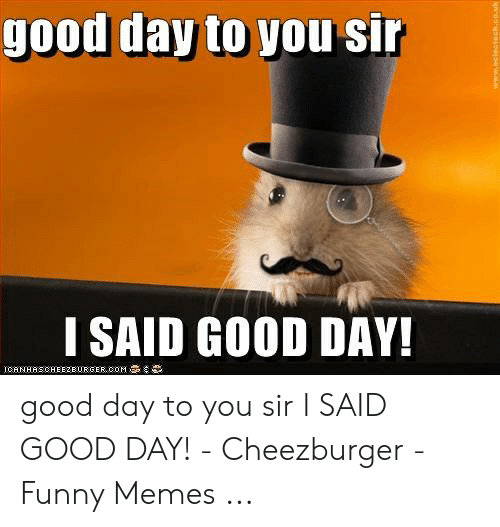 I Said Good Day Meme: good day to you sir  I SAID GOOD DAY!  ICANHASCHEEZEURGER coM good day to you sir I SAID GOOD DAY! - Cheezburger - Funny Memes ...