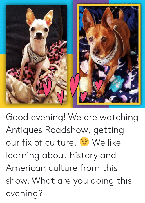 antiques roadshow: Good evening! We are watching Antiques Roadshow, getting our fix of culture. 😉 We like learning about history and American culture from this show. What are you doing this evening?