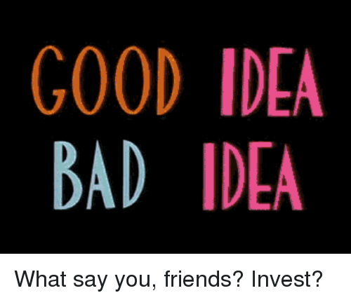 What Say You: GOOD IDEA  BAD IDEA  2 What say you, friends? Invest?