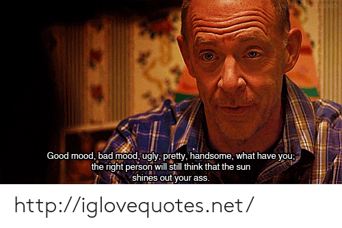 Shines: Good mood, bad mood, ugly, pretty, handsome, what have you;  the right person will still think that the sur  shines out your ass. http://iglovequotes.net/