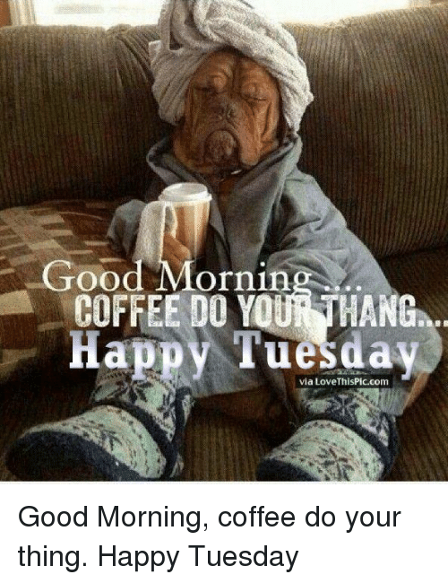 25 best memes about good morning coffee good morning