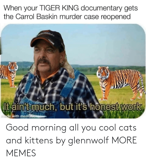 Kittens: Good morning all you cool cats and kittens by glennwolf MORE MEMES