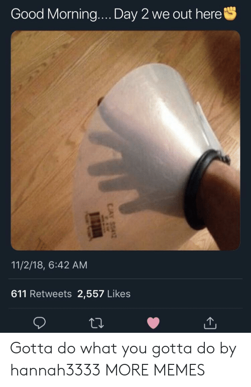 do what you gotta do: Good Morning  Day 2 we out here  11/2/18, 6:42 AM  611 Retweets 2,557 Likes Gotta do what you gotta do by hannah3333 MORE MEMES