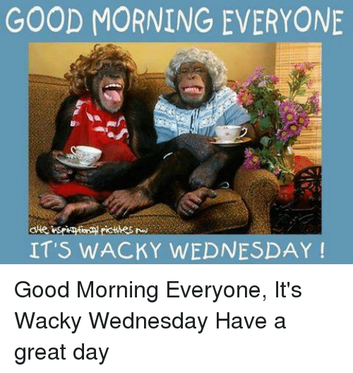 Good Morning Everyone Have A Good Day : Funny wacky wednesday memes of on sizzle youtube ksi