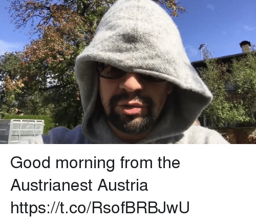Memes, Good Morning, and Good: Good morning from the Austrianest Austria https://t.co/RsofBRBJwU