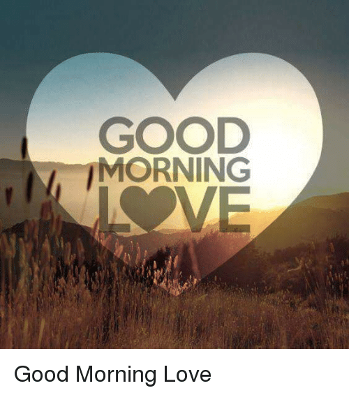Good Morning Love Memes : Funny good morning memes of on sizzle