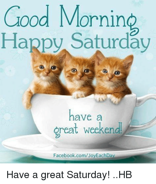 Good Morning Saturday Have A Wonderful Weekend : Funny happy saturday memes of on sizzle love