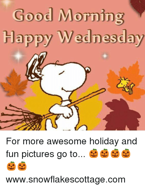 Good Morning Meme Wednesday : Good morning happy wednesday for more awesome holiday and
