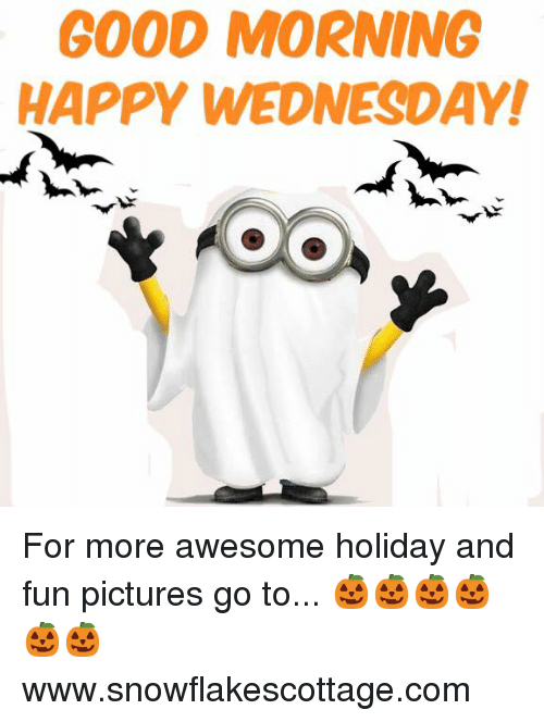 Memes, Good Morning, and Good: GOOD MORNING  HAPPY WEDNESDAY! For more awesome holiday and fun pictures go to... 🎃🎃🎃🎃🎃🎃www.snowflakescottage.com