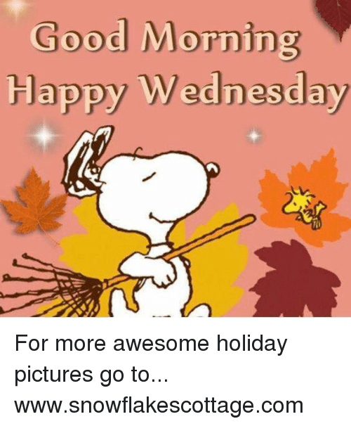 Memes, Good Morning, and Good: Good Morning  Happy Wednesday For more awesome holiday pictures go to... www.snowflakescottage.com