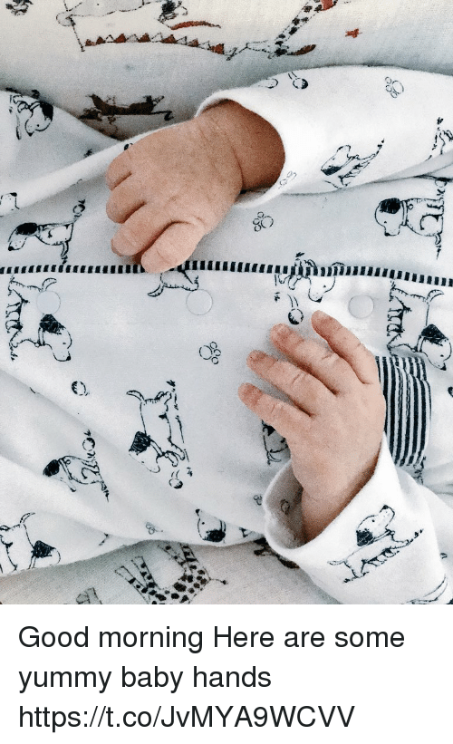 Memes, Good Morning, and Good: Good morning  Here are some yummy baby hands https://t.co/JvMYA9WCVV