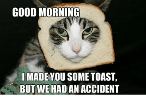 Good Morning, Good, and Toast: GOOD MORNING  IMADE YOU SOME TOAST,  BUT WE HAD AN ACCIDENT