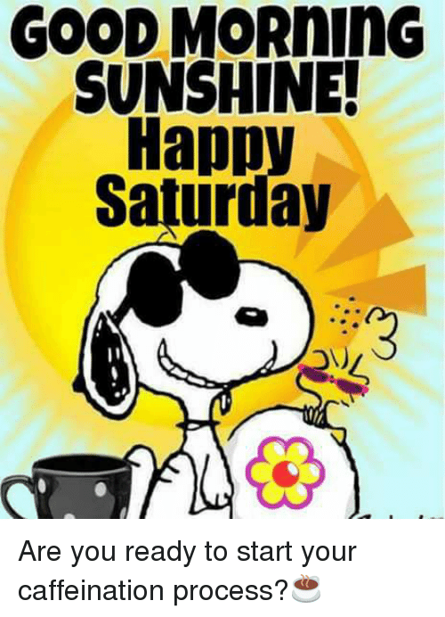 Good Morning Saturday Meme : Good morning sunshine happy saturday are you ready to