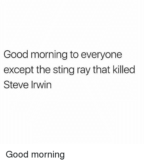 Memes, Steve Irwin, and Good Morning: Good morning to everyone  except the sting ray that killed  Steve Irwin Good morning