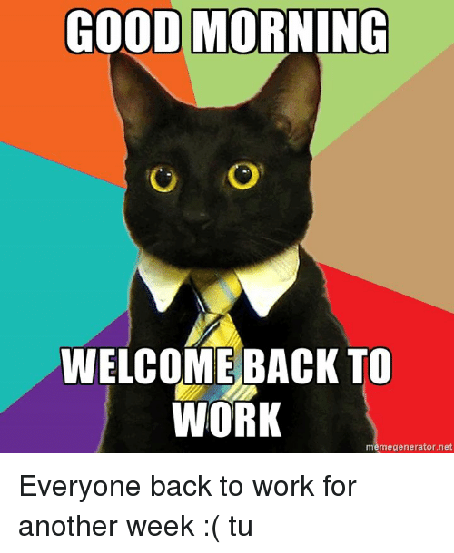 Good Morning Meme Generator : Best memes about welcome back to work