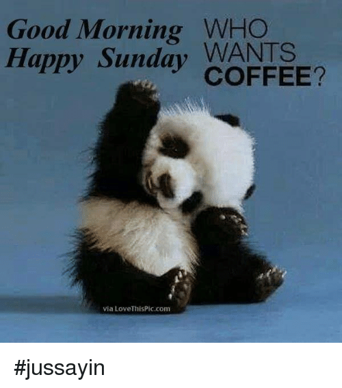 Dank, Good Morning, and Coffee: Good Morning WHO  Happy Sunday WANTS  COFFEE?  via LoveThisPic.com #jussayin
