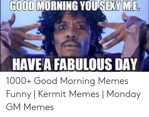 Funny Kermit Memes: GOOD MORNING YOU SEXY M.F  HAVEA FABULOUS DAY 1000+ Good Morning Memes Funny | Kermit Memes | Monday GM Memes