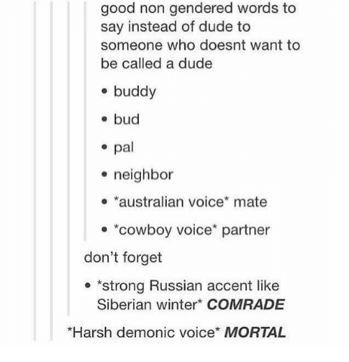 """Memes, Neighbors, and Cowboy: good non gendered words to  say instead of dude to  someone who doesnt want to  be called a dude  buddy  bud  pal  neighbor  australian voice* mate  """"cowboy voice partner  don't forget  'strong Russian accent like  Siberian winter COMRADE  *Harsh demonic voice* MORTAL"""