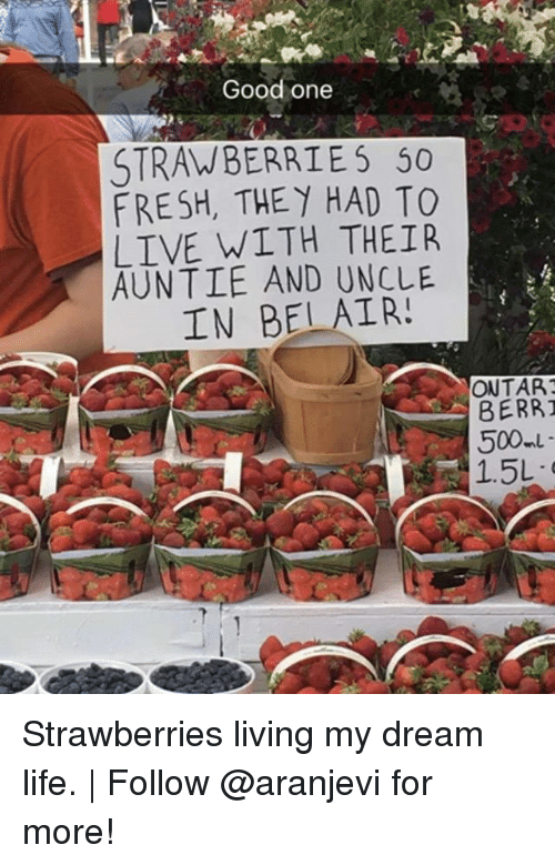 berri: Good one  STRAWBERRIES 50  FRESH, THEY HAD TO  LIVE WITH THEIR  AUNTIE AND UNCLE  IN BELAIR!  ONTART  BERRI  500 Strawberries living my dream life. | Follow @aranjevi for more!