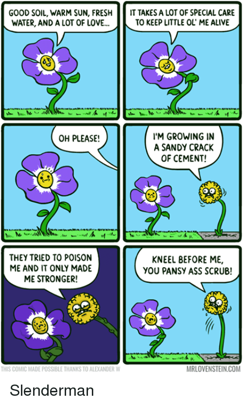 Alive, Ass, and Fresh: GOOD SOIL, WARM SUN, FRESH  IT TAKES A LOT OF SPECIAL CARE  WATER, AND A LOT OF LOVE...  TO KEEP LITTLE OL ME ALIVE  I'M GROWING IN  OH PLEASE!  A SANDY CRACK  OF CEMENT!  THEY TRIED TO POISON  KNEEL BEFORE ME,  ME AND IT ONLY MADE  YOU PANSY ASS SCRUB!  ME STRONGER!  MRLOVENSTEIN.COM  THIS COMIC MADE POSSIBLE THANKS TO ALEKANDER W Slenderman