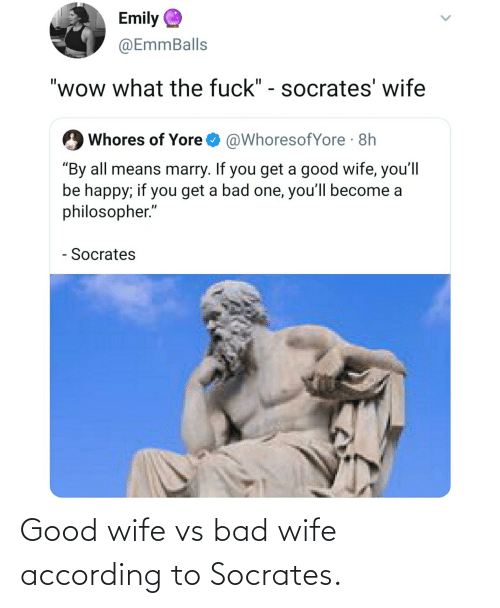 Bad, Good, and Wife: Good wife vs bad wife according to Socrates.