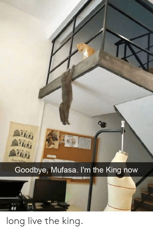 Long Live: Goodbye, Mufasa. I'm the King now long live the king.