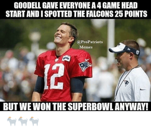 Pro Patriots: GOODELL, GAVE EVERYONEA4GAMEHEAD  STARTANDISPOTTED THE FALCONS25 POINTS  @Pro Patriots  Memes  BUTWEWON THE SUPERBOWLANYWAY! 🐐🐐🐐