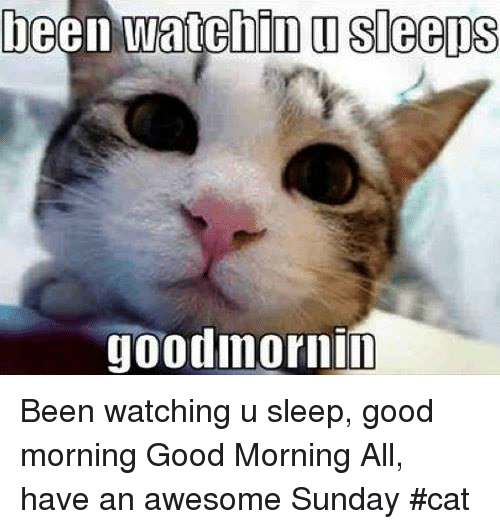Good Morning All Meme : Goodmornin been watching u sleep good morning