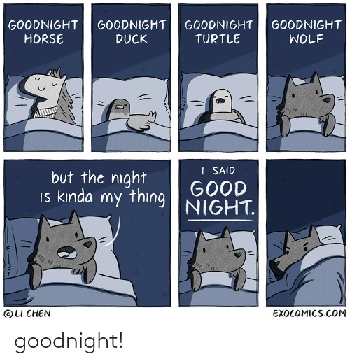 goodnight: goodnight!