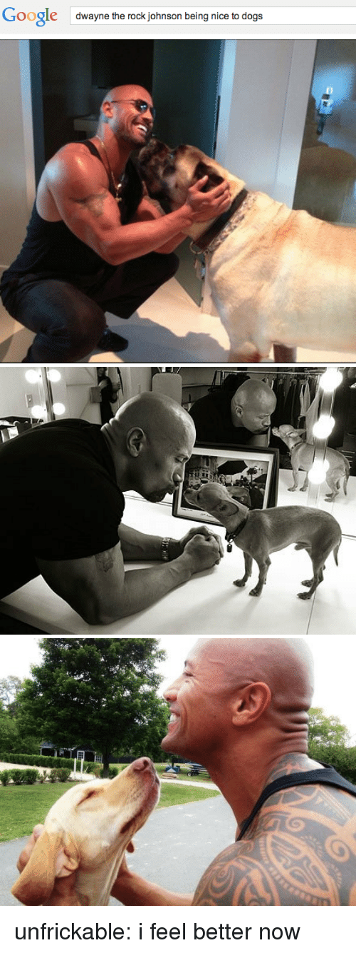 the rock johnson: Google  dwayne the rock johnson being nice to dogs unfrickable:  i feel better now
