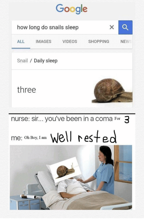 Google, Shopping, and Videos: Google  how long do snails sleep  ALL IMAGES VIDEOS SHOPPING NEW  Snail / Daily sleep  three  nurse: sir... you've been in a coma For 3  Well rested  me: Oh Boy, I am
