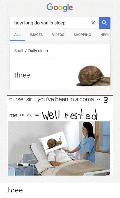 sir-youve-been-in-a-coma: Google  how long do snails sleep  NEWS  IMAGES  ALL  VIDEOS  SHOPPING  Snail / Daily sleep  three  nurse: sir... you've been in a coma For 3  well rested  me: Oh Boy, I am three