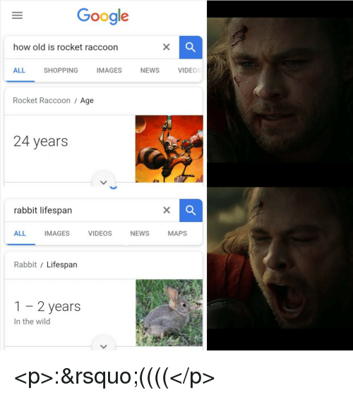 Google, News, and Shopping: Google  how old is rocket raccoon  ALL  SHOPPING  MAGESNEWSVIDEO  Rocket Raccoon / Age  24 years  rabbit lifespan  ALL IMAGESVIDEOS NEWS MAPS  Rabbit / Lifespan  1-2 years  In the wild <p>:'((((</p>