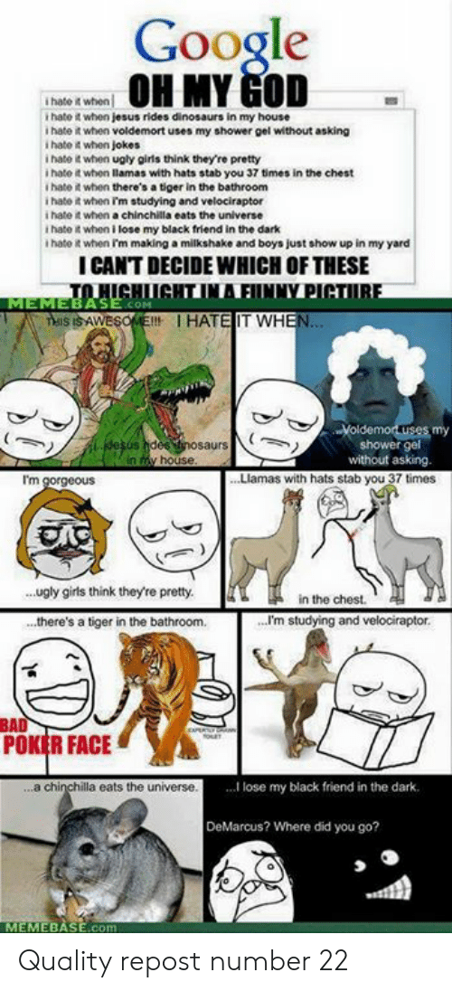 When Jokes: Google  OMY GOD  i hate it when  t hate it when jesus rides dinosaurs in my house  i hate it when voldemort uses my shower gel without asking  i hate 4 when jokes  i hate it when ugly girls think they're pretty  i hate it whon llamas with hats stab you 37 times in the chest  I hate it when there's a tiger in the bathroom  i hatot when rm studying and velociraptor  i hate when a chinchilla eats the universe  t hate it when i lose my black friend in the dark  i hate it when Im making a milkshake and boys just show up in my yard  ICANT DECIDE WHICH OF THESE  MEMEBASE.coM  WESOEIHATE IT WH  -Voldemoruses my  shower gel  without asking.  saurs  I'm  . Llamas with hats stab you 37 times  ugly girls think they're pretty.  ..there's a tiger in the bathroom.  ..  in the chest  ...I'm studying and velociraptor  EAD  POKER FACE  a chi  la eats the universe  ...I lose my black friend in the dark.  DeMarcus? Where did you go?  MEMEBASE.c Quality repost number 22