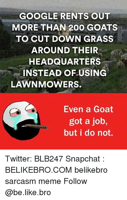 Bailey Jay, Be Like, and Google: GOOGLE RENTS OUT  MORE THAN 200 GOATS  TO CUT DOWN GRASS  AROUND THEIR  HEADQUARTERS  INSTEAD OF USING  LAWN MOWERS.  Even a Goat  got a job,  but I do not. Twitter: BLB247 Snapchat : BELIKEBRO.COM belikebro sarcasm meme Follow @be.like.bro
